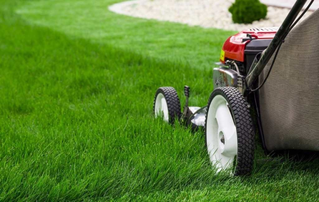 Benefits of having your garden built by a professional Landscapers