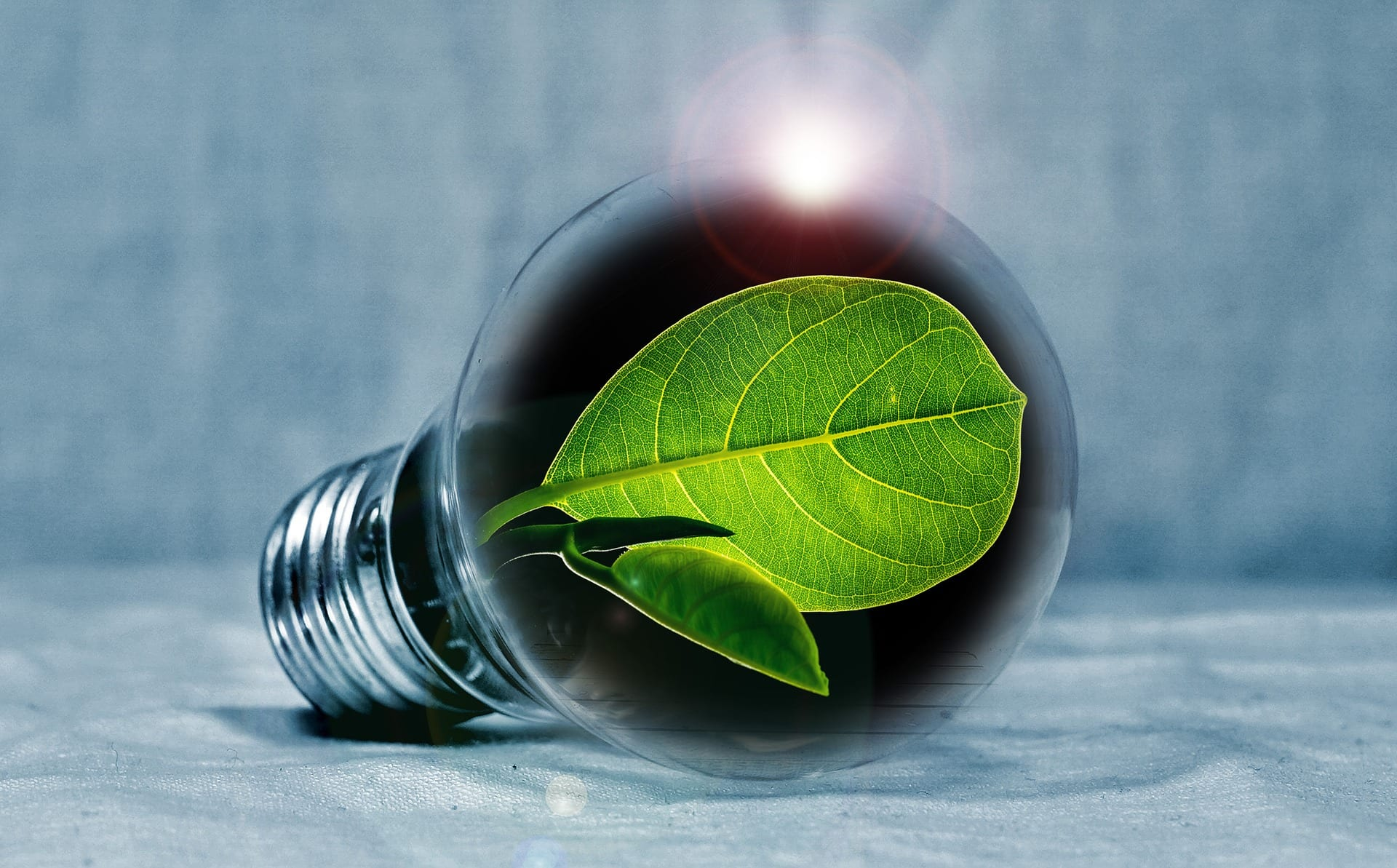 Energy Savings Tips for Your Apartment