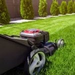 How to Prepare a Lawn For Mowing?