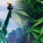 Cannabis Legalization: What's Coming for New York