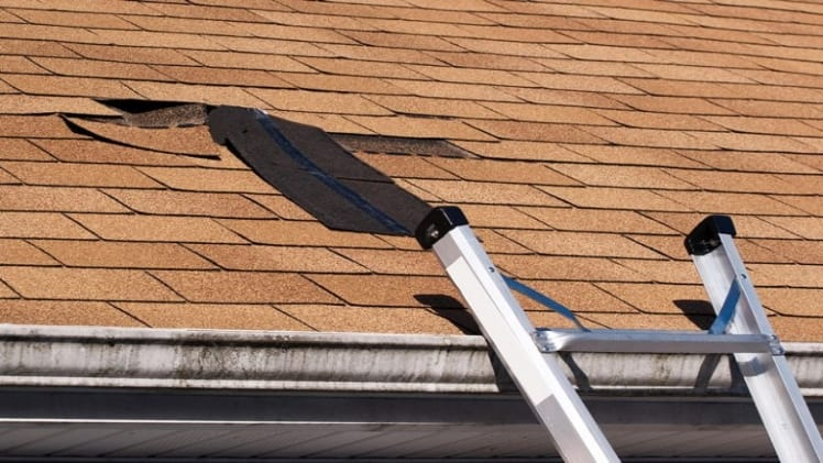 Pro tricks to Prevent Roof Damage by different methods