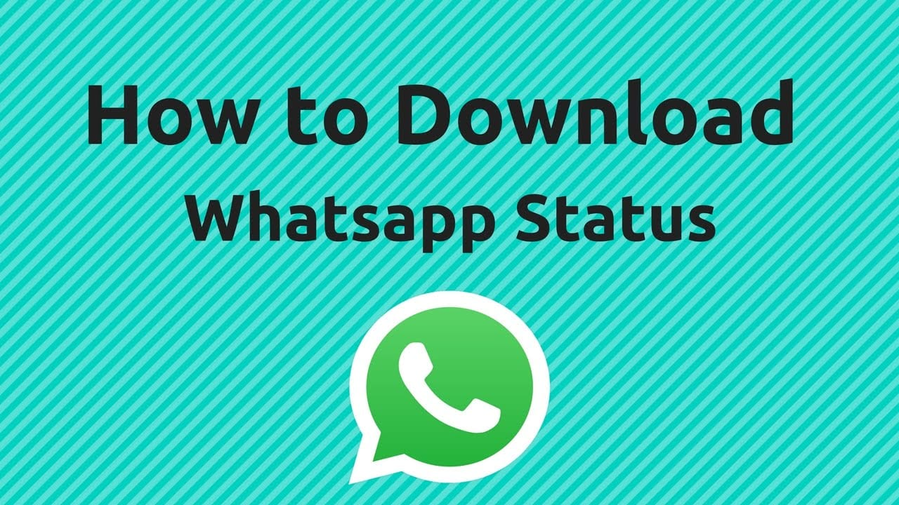 How to download WhatsApp status?- the quickest methods