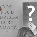 Dog Food Advisor Is So Famous, But Why?