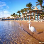 Top Places to Visit in Hurghada During Your First Tour