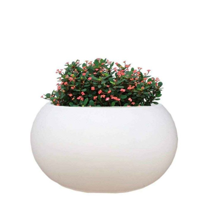 ARE YOU READY TO DECORATE YOUR HOME WITH HYBRID POLYMER PLANTERS?