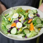 The best diet to plan- weight loss, sustainability, and more
